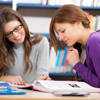 Индивидуальные занятия по английскому языку для школьников в Москве (ВАО)